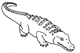 how to draw crocodile coloring page how to draw crocodile