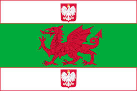 Flag People A Flag For Polish Welsh People Me Vexillology