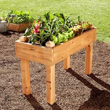 stunning raised vegetable garden beds kits plastic garden boxes