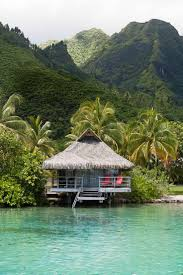 34 best moorea images on pinterest moorea tahiti travel and