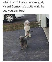 Karen Meme - dopl3r com memes what the h ck are you staring at karen