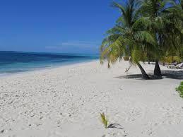 free images beach sea coast sand sun shore summer