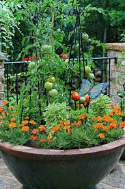 Vegetable Pot Garden by 590 Best Creative Planters Images On Pinterest Planters