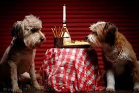 cena al lume di candela read save 礙 andata la vostra cena a lume di candela
