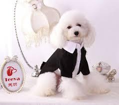 dog wedding dress 2018 dog wedding dress pet dog clothes pet puppy dresses teddy
