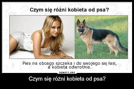 si e psa czym się różni kobieta od psa