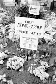 backyard atomic gardens of the 1960s and their undocumented legacy