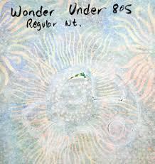 i have a notion wonder under