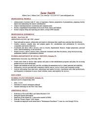 it resume profile examples download sample profile summary for