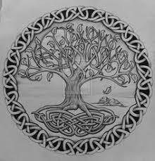 celtic oak tree tree of with rocks by design