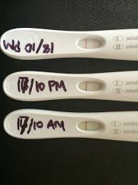 light line on ovulation test pregnancy page 8 nest nestability