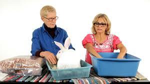 rabbit material best litter material for a rabbit pet rabbits