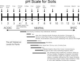 protocol soil ph ecoplexity