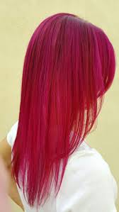 fuschia the 25 best fuschia hair ideas on pinterest blonde hair purple