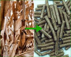 Wood Pellet Machines South Africa by How To Start A Wood Pellet Plant And Production Steps
