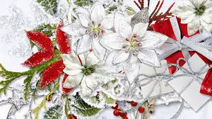 christmas flowers flowers christmas flowers 1920x1080px 100 quality hd wallpapers