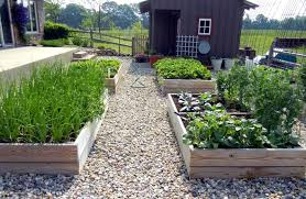 neat best vegetable garden layout best vegetable garden layout