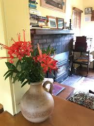 Classic Cottage Classic Cottages Port Arthur Deals U0026 Reviews Port Arthur Aus