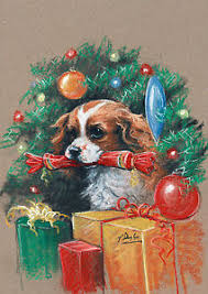 cavalier king charles cards pack of 10 by paul doyle