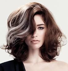 grey streaks in hair hair colour trends for fall winter 2014 salon