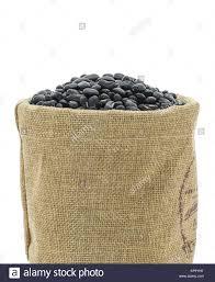 leguminous fodder crop stock photos u0026 leguminous fodder crop stock