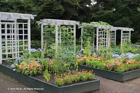 greenhouse for vegetable garden nybg janet davis explores colour