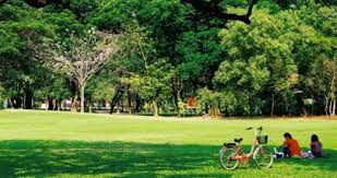 contact of lumpini park bangkok phone address customer care