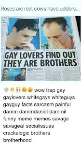 Funny Gay Guy Memes - roses are red cows have udders ute cortu gay lovers find out they