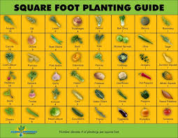 square foot planting guide square feet planting and squares