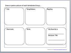 free printable worksheets vertebrates invertebrates vertebrates and invertebrates worksheets homeschool and school