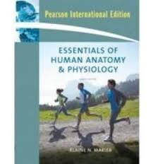 Human Anatomy And Physiology Textbook Online 9780321513533 Essentials Of Human Anatomy U0026 Physiology 9th