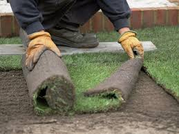 making a new lawn choosing between seed and sod lawns hgtv