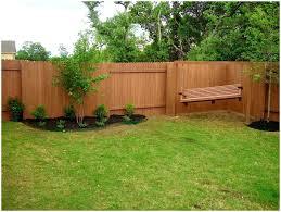 backyards gorgeous bamboo in backyard bamboo in your backyard