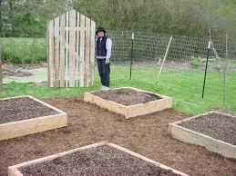 Kitchen Gardens Design Home Vegetable Garden Fence Decorating Clear