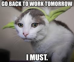 Back To Work Meme - go back to work tomorrow i must memes