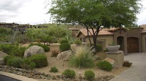 Modern Front Yard Desert Landscaping With Palm Tree And Enchanting Arizona Landscape Design Ideas 54 For Your Modern Home