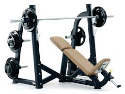 bench routines incline workout bench vcomimc