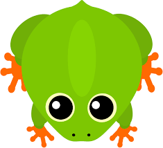 tree frog design mopeio