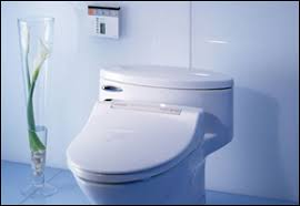 Toilet With Bidet Built In The Toto S300 Jasmin Bidet A Remarkable Toilet Seat Bidet From