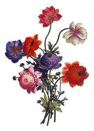 floral bouquets free vintage images floral bouquets the graffical muse