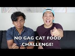 Challenge Roi No Cat Food Challenge W Roiwassabi Redbatsu