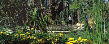 cura giardino jard祗n el huerto cura giardino el huerto cura a elche