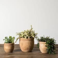Plants Of Season 4 Joanna by Clara Carving Pot Magnolia Market Chip U0026 Joanna Gaines
