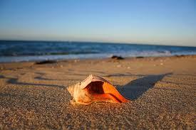 Massachusetts beaches images Top ten beaches in massachusetts by county the styleboston blog jpg