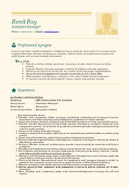 It Director Resume Examples by Project Manager Advertising Resume