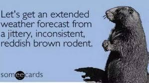Groundhog Meme - groundhog day 2016 best funny memes heavy com