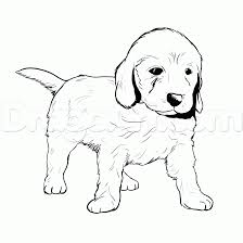 free coloring pages of goldendoodle puppies color sheets