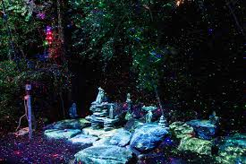 enchanted forest of light tickets foresta lumina enchanted forest light show in quebec hiconsumption