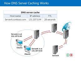 How Dns Works by Implementing Dns Module D 7 Implementing Dns Ppt Download