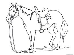 coloring pages horse pictures color print horse pictures